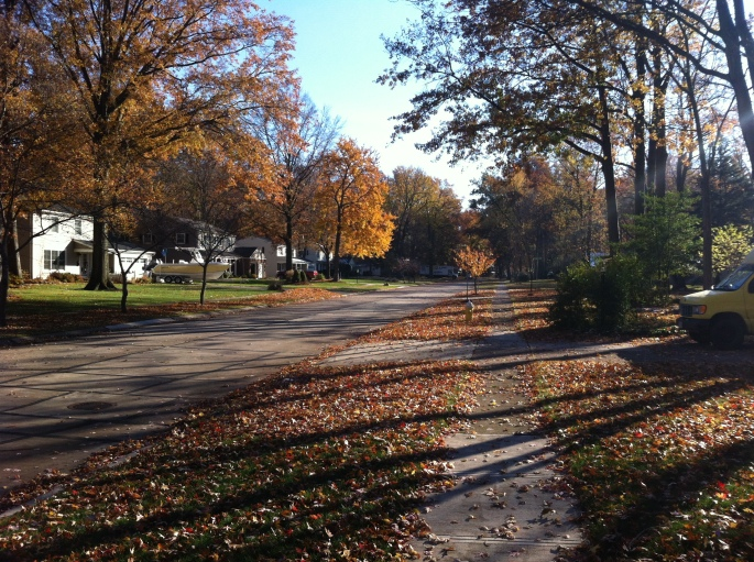 looking south on Cherry Lane, Fall 2013