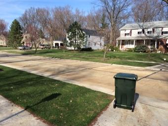 new trash in the neighborhood