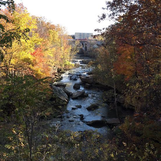 Berea Falls, fall, 2014