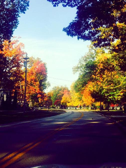 fall colors on Cherry Lane